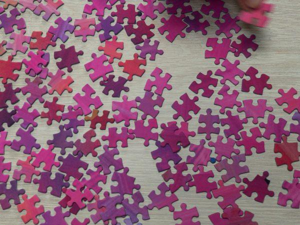 botanical-study-pink-tulips-butterflies-jigsaw-puzzle-black-background