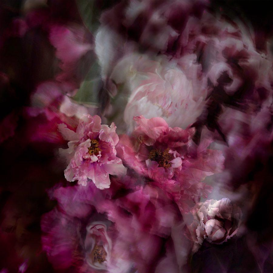 dark-floral-peonies-pinks-impressionist-bouquet