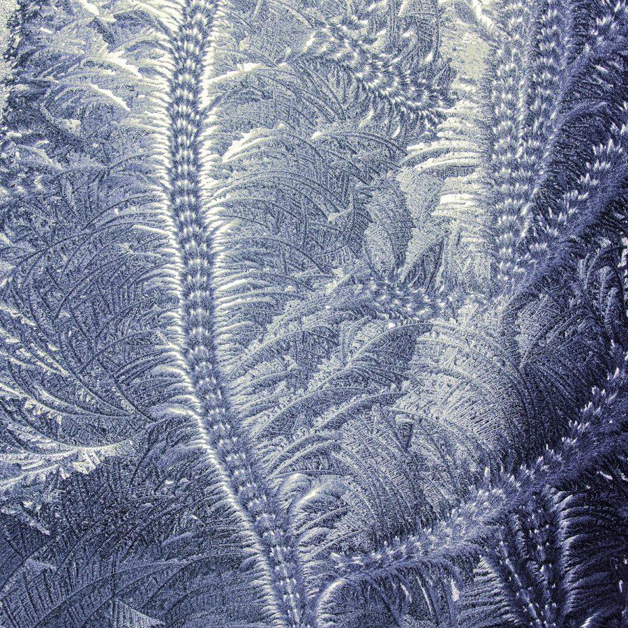 texture-textures-pressed-glass-frost-patterns-scroll-fern-dark-blue