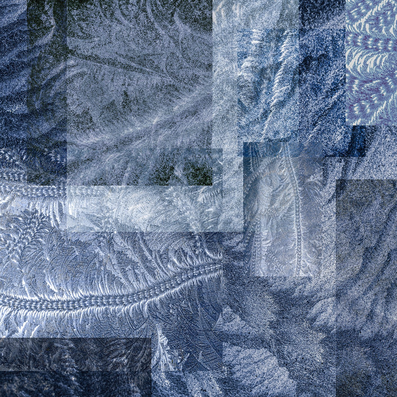 collage-shapes-textures-black-frost-patterns-blue-dark-grey-pressed-glass-fern-scroll