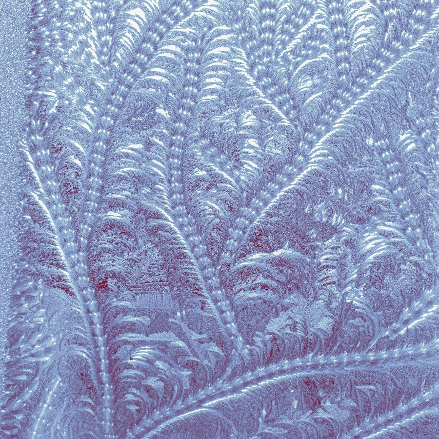 texture-textures-pressed-glass-frost-patterns-scroll-fern-pale-blu