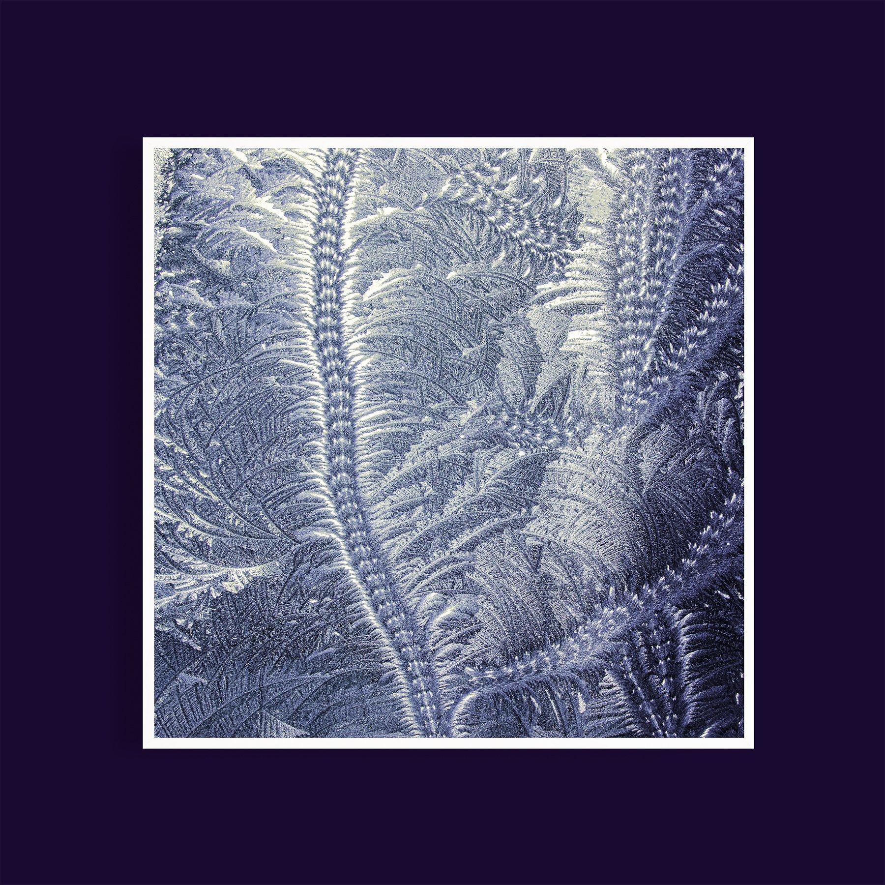 white-framed-dusk-frost-pattern-glass-on-glass-dark-purple-wall