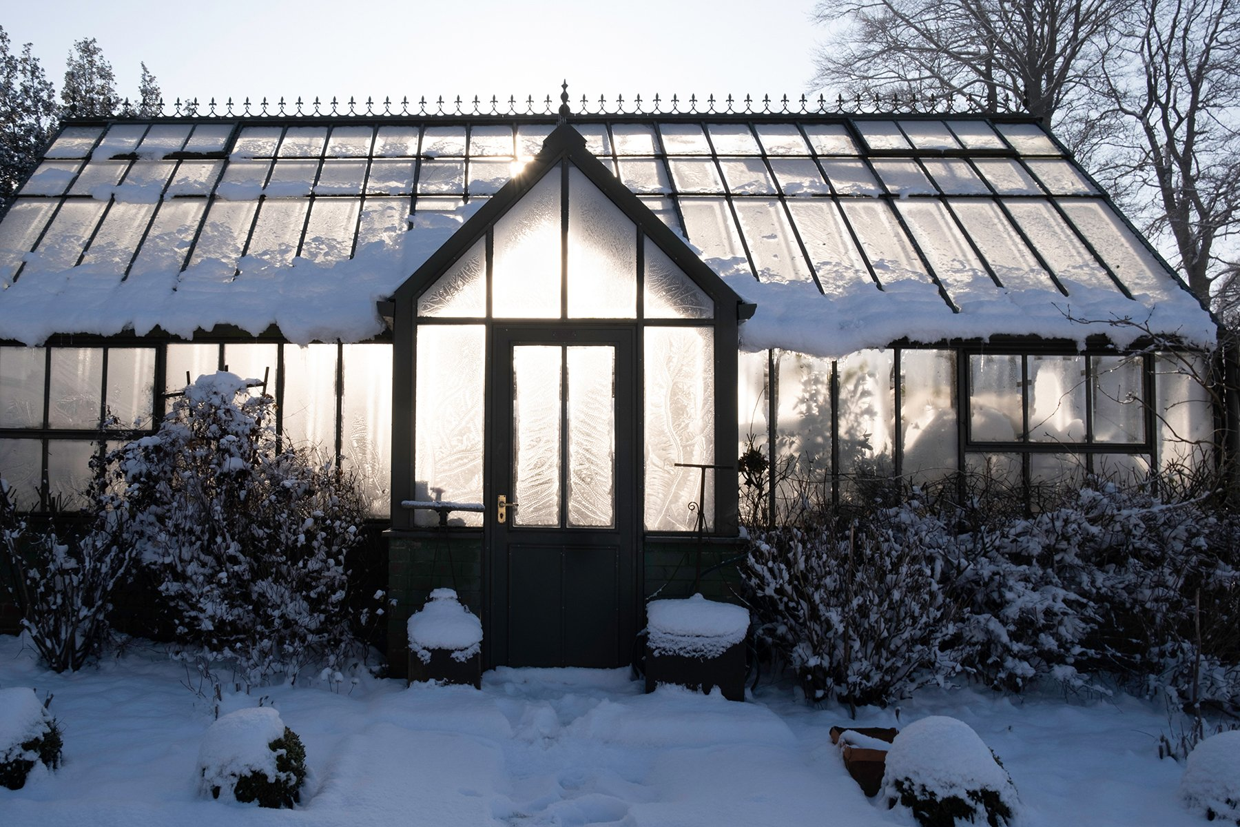 greenhouse-frost-patterns-snow-garden-topiary