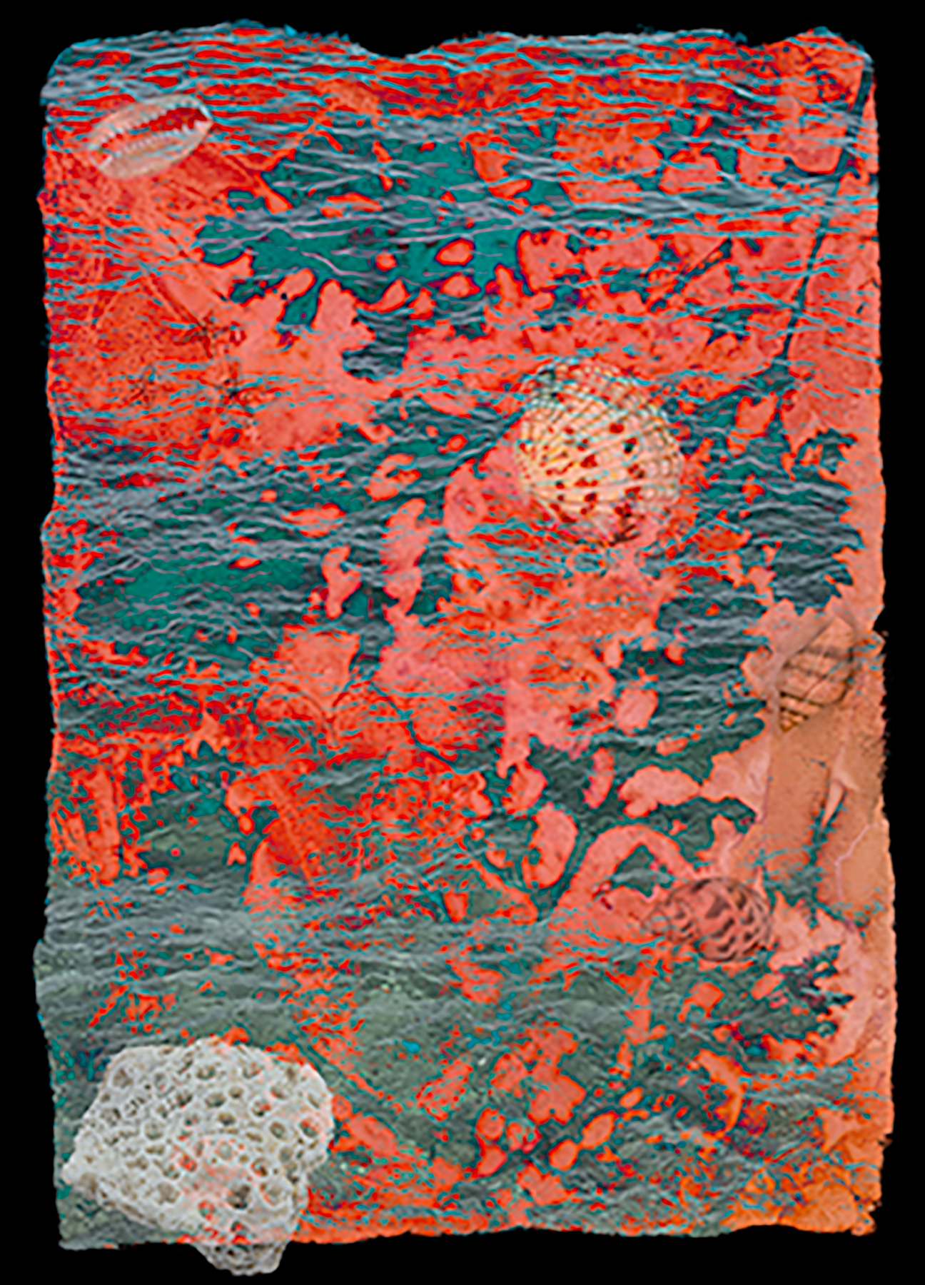 Deep Impressions, Coral & Turquoise